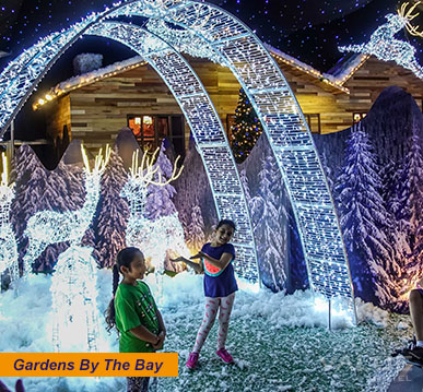 Christmas Wonderland at Gardens by the Bay 2017 | Value Hotel