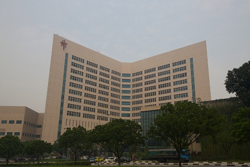 Tan Tock Seng General Hospital - the third-largest hospital in Singapore after the Institute of Mental Health (Singapore) and Singapore General Hospital, but its accident and emergency department is the busiest in the country largely due to its geographically centralised location